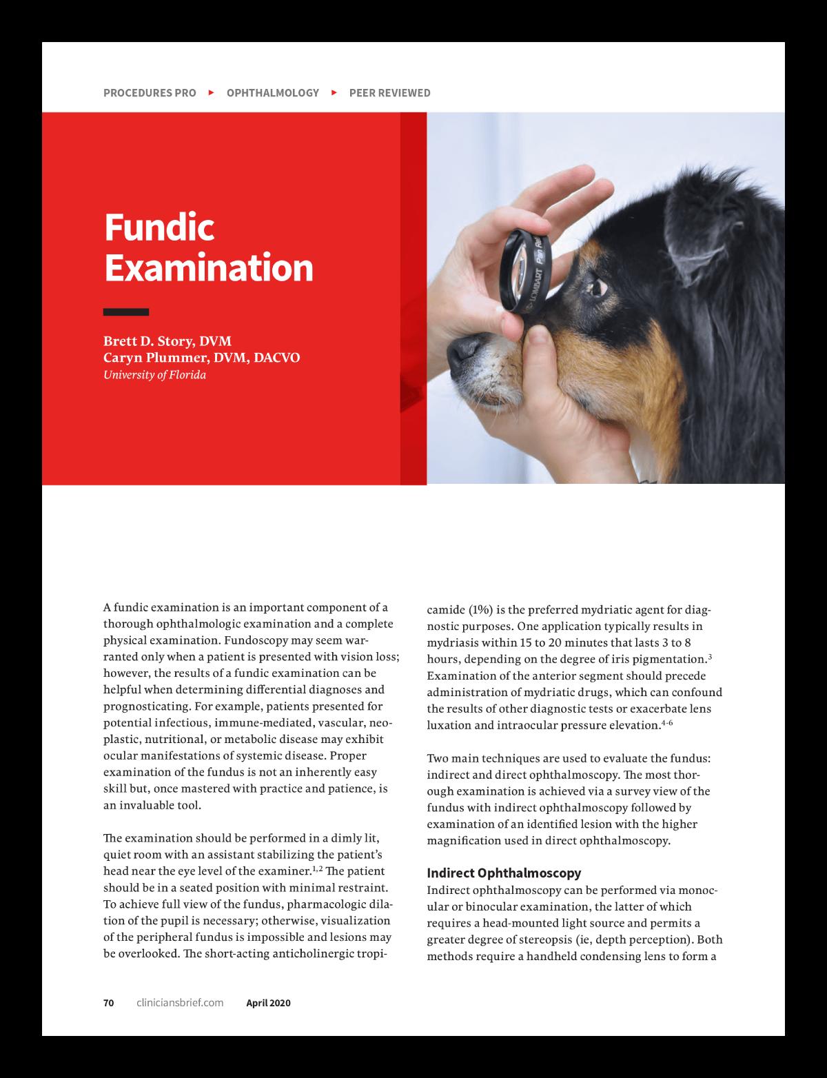 Procedures Pro: Fundic Examination